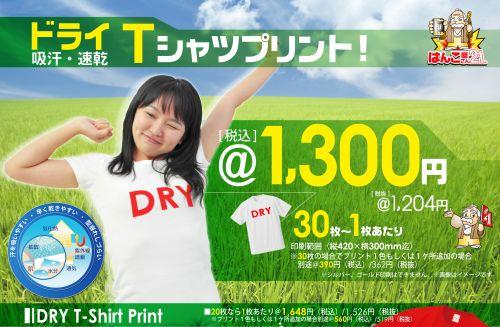 ドライTシャツプリント1300円から